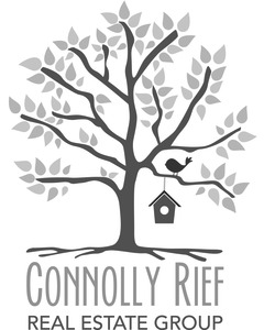 Anne Connolly Rief Group